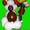 фигурки из воздушных шаров #1068718