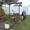 Загородный отдых. Сауна #1355777