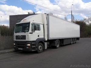 Доставка грузов,транспортные услуги Гомель. - Изображение #3, Объявление #1171777