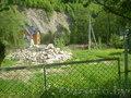 продаю участок земли в карпатах