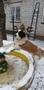 Питомник предлагает щенков сенбернара - Изображение #2, Объявление #1533316